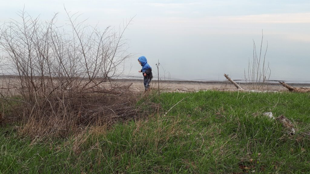 The Hamilton Beach Trail is a 16km paved trail along the shores of Lake Ontario. It's one of the great trails for kids in Hamilton!
